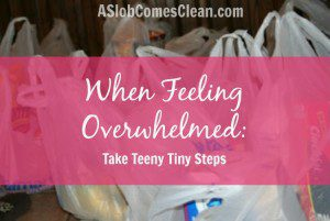 When Feeling Overwhelmed: Take Teeny Tiny Steps
