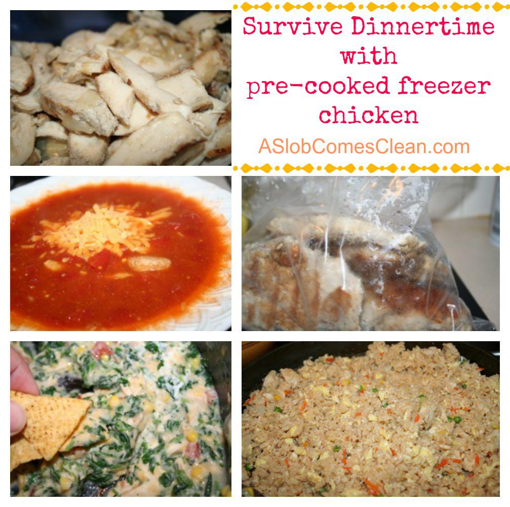 Or, freezer meal cooking can take the form of swapping pre-prepared frozen meals with friends in a Freezer Club. Why cook freezer meals? Freezer cooking is a great strategy for saving money, saving mom's sanity, and feeding our families nutritious home-cooked food.