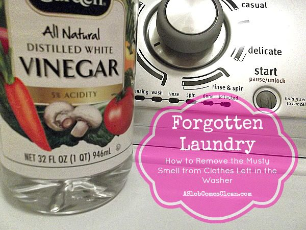 Forgotten Laundry (How to Remove the Stink from Clothes Left