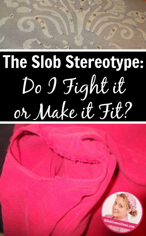 The Slob Stereotype (Fighting It and Fitting It) pin at ASlobComesClean.com