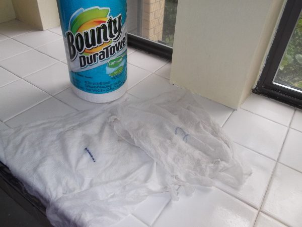 The two paper towels when the job was done
