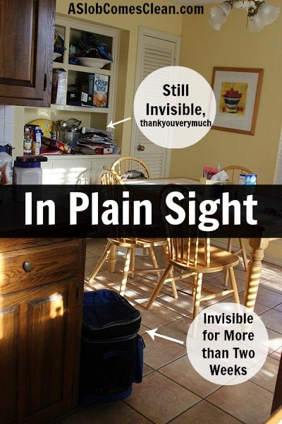 In Plain Sight at ASlobComesClean.com