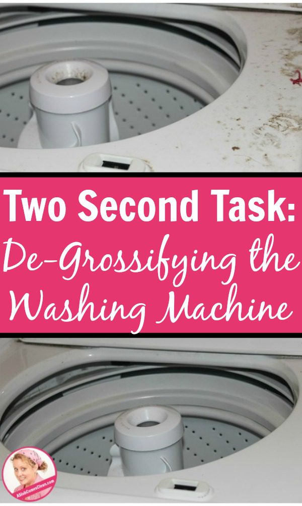Two Second Task De-Grossifying the Washing Machine pin at ASlobComesClean.com