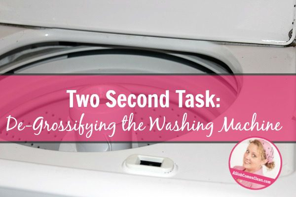 Two Second Task De-Grossifying the Washing Machine title at ASlobComesClean.com