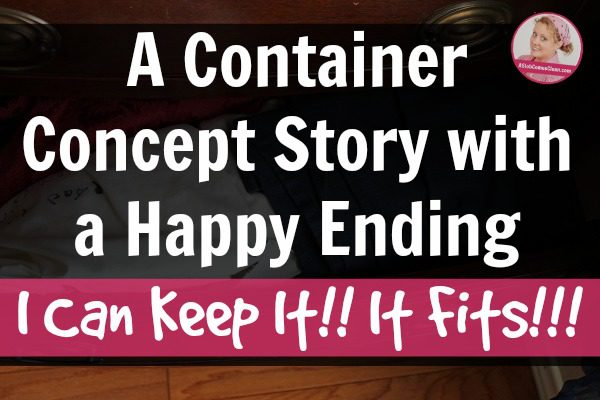 Using the Container Concept to Declutter (The Story with the Happy Ending!) at ASlobComesClean.com