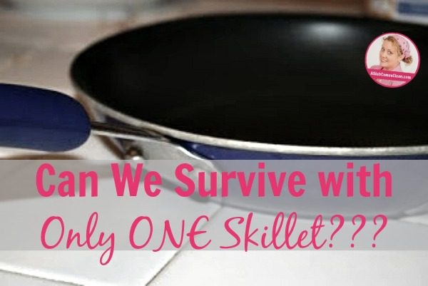 Can We Survive with Only ONE Skillet at ASlobComesClean.com