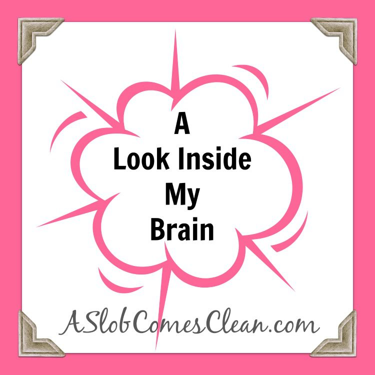 Look Inside My Brain - A Slob Comes Clean