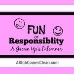 Fun or Responsibility A Grown Ups Dilemma - A Slob Comes Clean