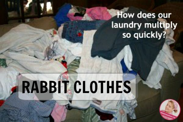 rabbit-clothes-laundry-that-multiplies-like-rabbits-at-aslobcomesclean-com-fb