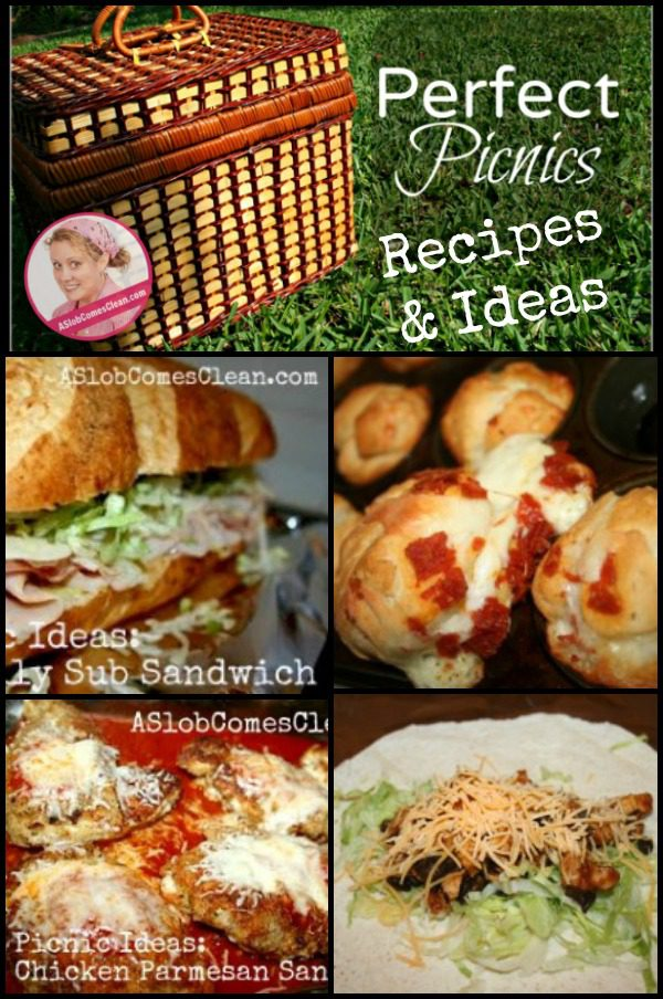 Perfect Picnic Recipes and Ideas at ASlobComesClean.com