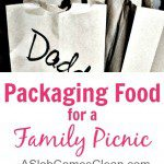 packaging food for a family picnic - A Slob Comes Clean