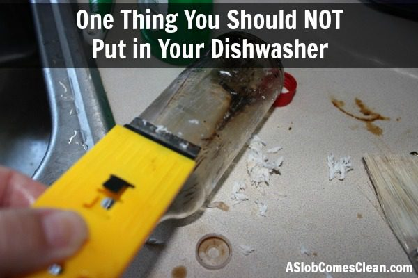 One Thing You Should NOT Put in Your Dishwasher at ASlobComesClean.com