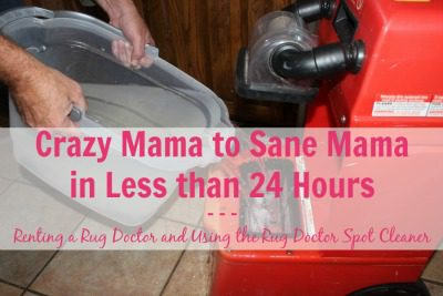 Crazy Mama To Sane Mama With Rug Doctor At ASlobComesClean.com