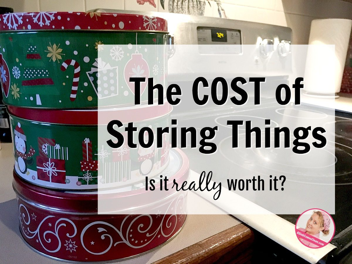 Is the cost of storing things really worth it at ASlobComesClean.com