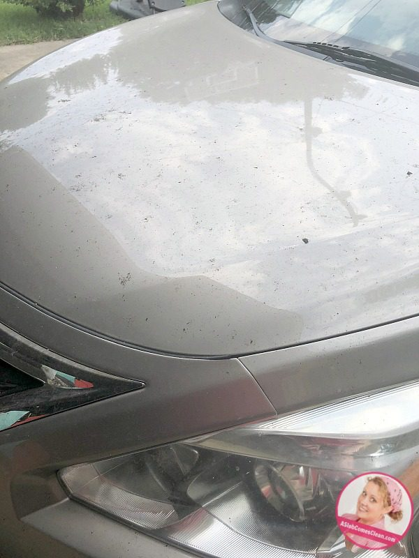 Cleaning Out the rain gutters car hood 5 at ASlobComesClean.com